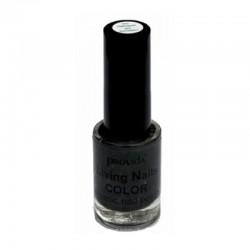 Natuurlijke nagellak black Provida