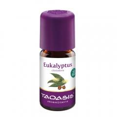 Taoasis eucalyptus citriodora